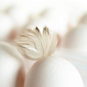 oczyszczanie jajem - wróżka Arkadia